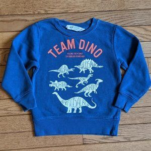 Dinosaur Sweatshirt Size: 2 -4 Years
